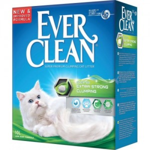 EVERCLEAN EXTRA STRONG SCENT 10 LT