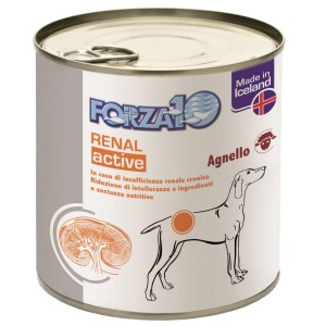 FORZA10 ACTIWET RENAL AGNELLO 300GR