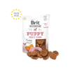 BRIT CARE SNACK CANE PUPPY COINS TACCHINO 8O GR